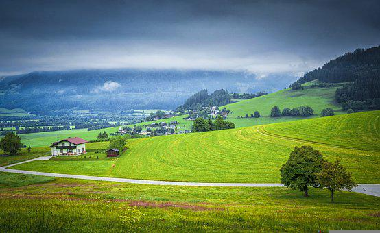 Farm, Road, Field, Rural, Tree, Mountain, Countryside