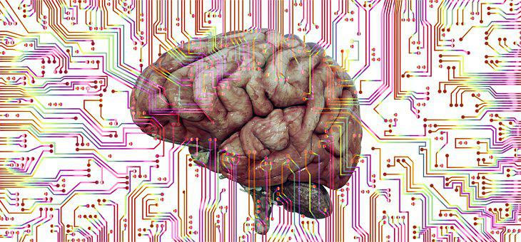 Brain, Think, Neurons, Circuit, Interconnection