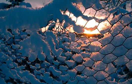 Winter, Snow, Fence, Sunset, Dusk, Outdoors, Season