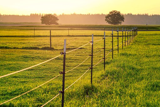 Meadow, Pasture, Paddock, Ranch, Grass, Nature, Dusk