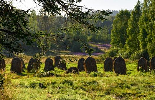 Haystacks, Field, Sunset, Cereal Field, Finnish Summer