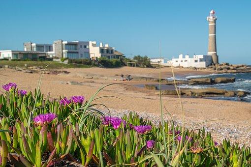 Nature, Lighthouse, Beach, Tourism, Sea, Ocean