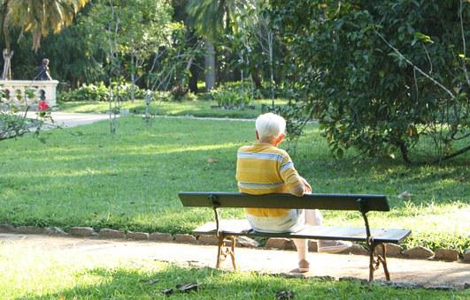Elderly, Bank, Alone, Garden, Avo, Loneliness, Sadness