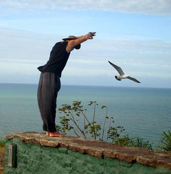 Freedom, Flight, Bird, Sea, Man, Human, Air, Dance