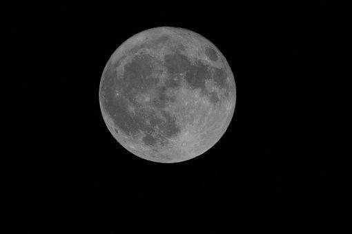 Full Moon, Moonlight, Night, Round, Darkness, Light
