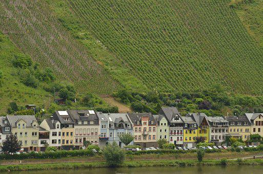 River, Moselle, Houses, Grape, Vineyard, Wine
