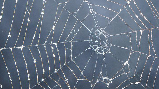 Cobweb, Dark, Smoke, Mystical, Mysterious, Halloween
