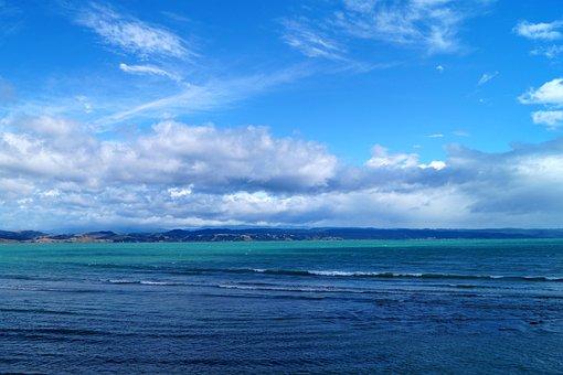 Sea, New Zealand, Napier, Coast, Nature, Rocky Coast