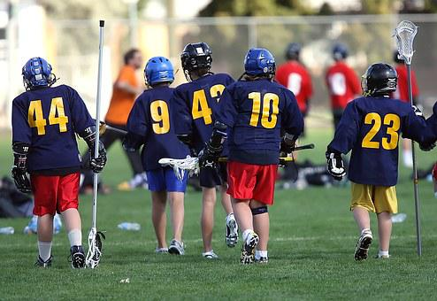 Lacrosse, Lax, Team, Players, Sport, Stick, Equipment