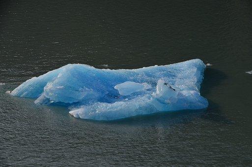 Glacier, Ice Floe, Floating Ice, Fjord