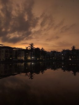 Palm Trees, Sunset, Monsoon, Tornado, Rain, Reflection