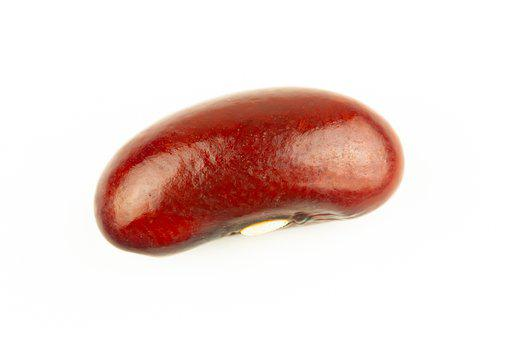 Beans, Vegetable, Protein, Nutrition, Food, Vegetarian