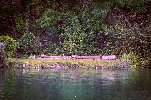 Lake, Outdoors, Nature, Riverbank, Pond, Trees