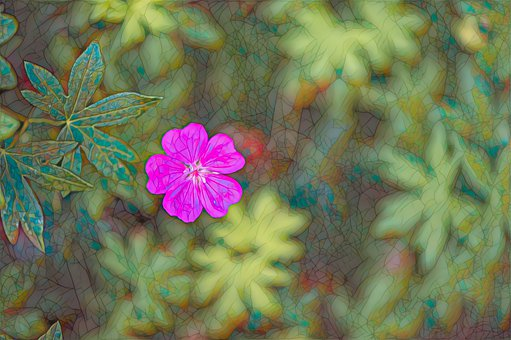 Pink Flower, Stained Glass, Pink, Design, Flower, Color