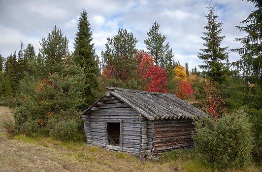 Barn, Ruska, Lapland, Finland, Autumn, Fall, Forest