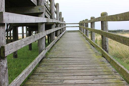 Wood, Bridge, Pier, Crossing, Wooden, Railing, Nature