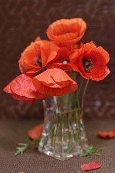 Poppies, Vase, Flowers, Decoration, Bouquet