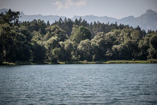 Lake, Water, Riverbank, Lakeside, Natural Lake
