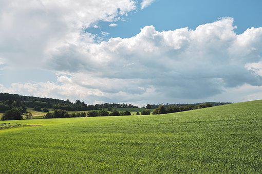 Nature, Countryside, Rural, Clouds, Sky, Field