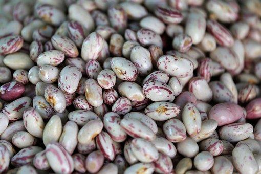 Beans, Legumes, Healthy Food, Food, Organic, Fresh