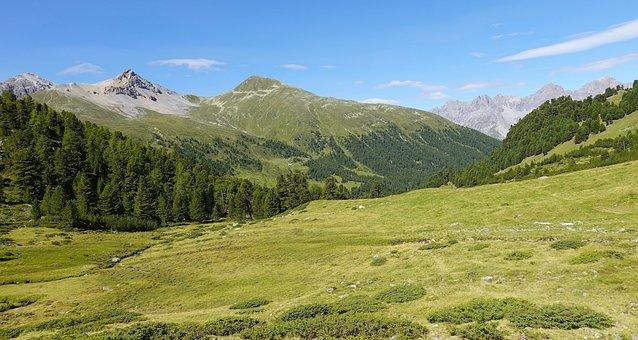 Mountains, Landscape, Nature, Field, Pasture Land