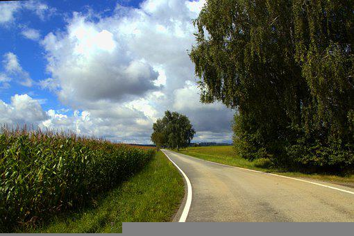 Road, Field, Trees, Country, Clouds, Summer, Nature