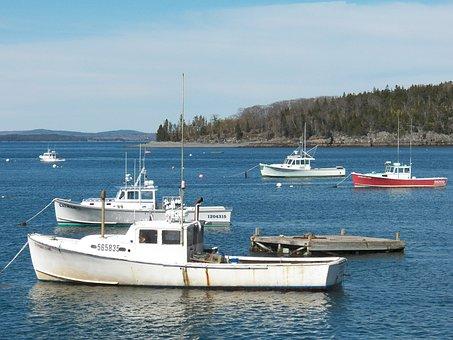 Fishing, Boat, Boats, Lobstermen, Lobster Boats, Harbor