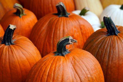 Pumpkin, Harvest, Autumn, Fall, Seasonal, Vegetables
