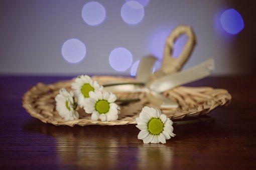 Flowers, Bouquet, Basket, Daisies, Souvenir, Wedding