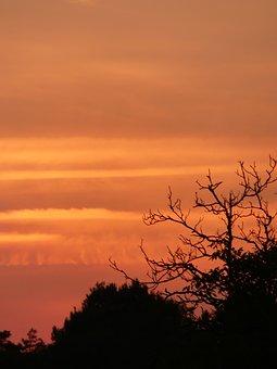 Light, Color, Colorful, Nature, Landscape, Orange, Sky