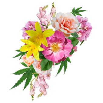 Flowers, Cannabis, Lillies, Roses, Marijuana, Bouquet