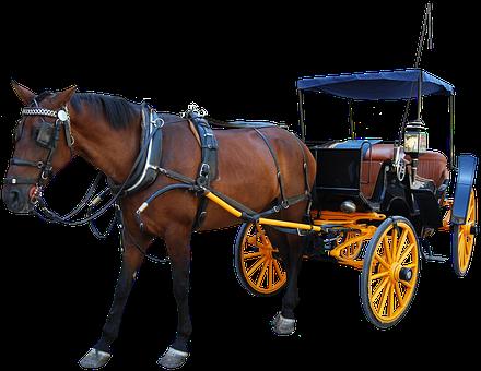 Horse, Carriage, Transportation, Buggy, Transport