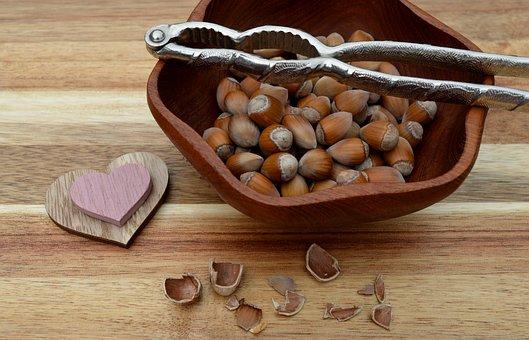 Hazelnuts, Hazel, Food, Nuts, Fall, Fruit, Nature