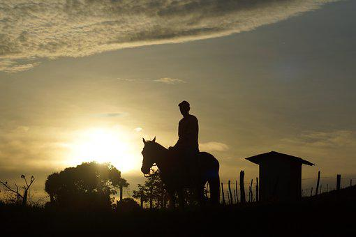 Horse, Cowboy, Adventure, Travel, Ride, Countryside