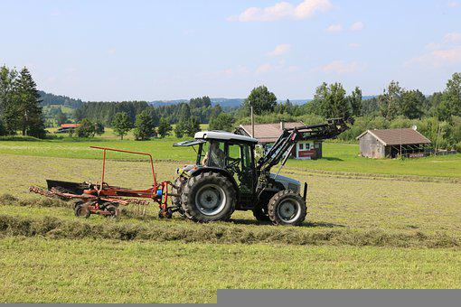 Tractor, Hay, Meadow, Hay Tedder, Alm, Agriculture
