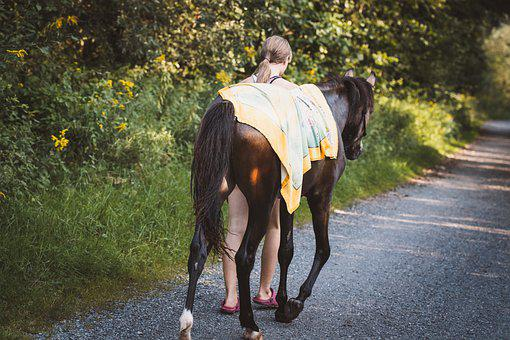 Girl, Horse, Pony, Foal, Pathway, Trail, Walk