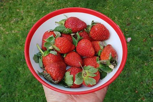 Fruit, Strawberries, Snack, Healthy, Sweet, Harvest