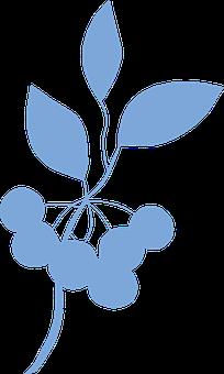 Cherries, Fruits, Cutout, Clip Art, Blue, Embryophyte