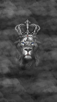 Lion, King, King Of The Jungle, Nature, Animal