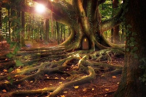 Treehouse, Forest, Composing, Fantasy, Landscape