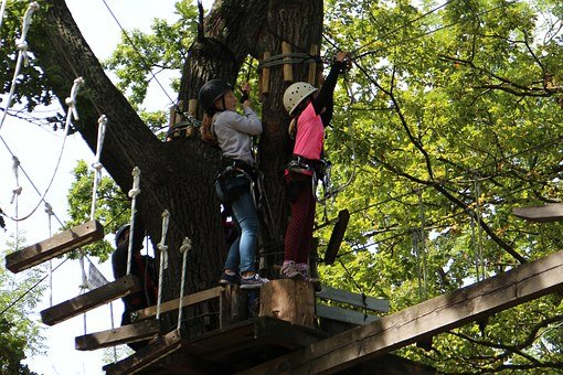 Climb, Children, Girl, High Ropes Course