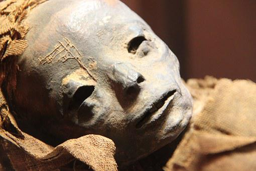 Mummy, Museum, Egyptian, Egypt, Ancient, Archaeology