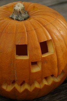 Pumpkin, Pumpkins, Orange, Bright, Autumn