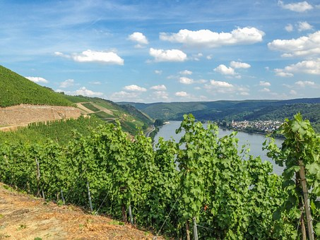 Boppard Hamm, Rhine, Middle Rhine, Germany, River
