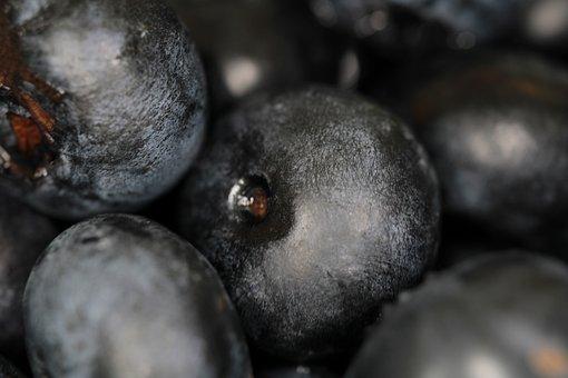 Blueberries, Fruits, Food, Fresh, Healthy, Ripe