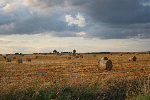 Hay, Field, Nature, Rural, Countryside, Sky, Clouds