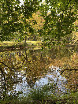 Lake, Park, Fall, Autumn, Water, Reflection, Forest