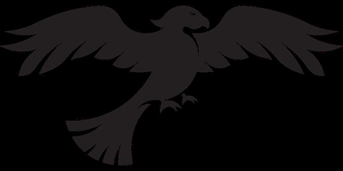 Eagle, Bird, Flying, Bird Of Prey, Animal, Wildlife
