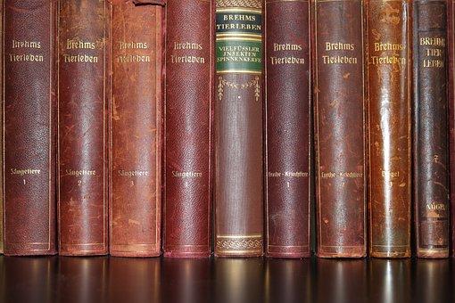 Books, Natural Science, Animal Life, Brehm