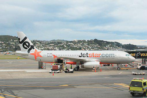 Airplane, Airport, Wellington Airport, Airbus